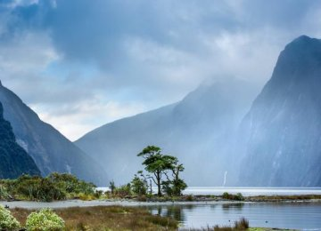 Kiwis Wary of Tourists' Impact