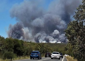 Tourists Rescued From Sydney Bushfire