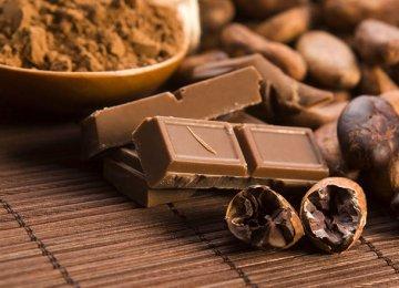 Chocolate Production May Be Harming Environment