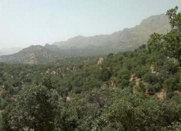 FAO Responsible for Zagros Forest Protection