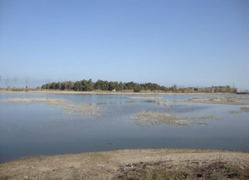 Lapou Wetland Reportedly Dried Up