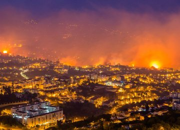 Climate Change Impacts Portugal's Deadly Fires