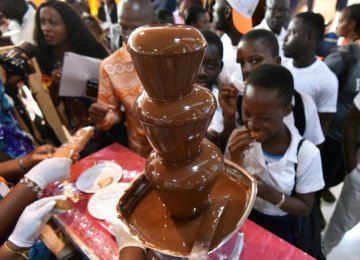 Ivory Coast Produces Record Cocoa