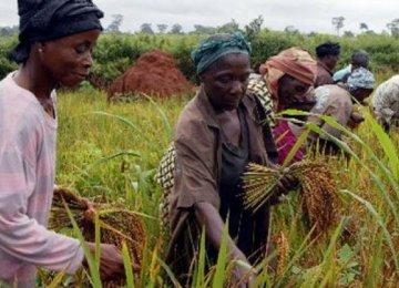 Nigeria CB Reports $91b FX Inflow in 2017