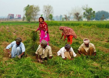 Agriculture growth is likely to remain lower than last year.