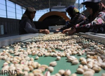 Pistachio Exports Top 35K Tons in 4 Months