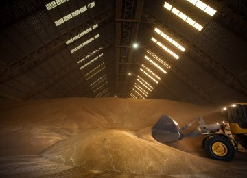 Argentina May Reinstate Tax on Crop Exports