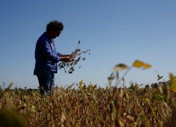 Argentina's Worst Drought Undermining Economy