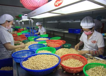 IMF Report: Vietnam's Strong Growth Will Continue