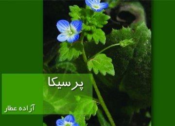 Bilingual Book on 33 Plant Species