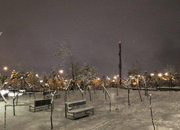 1st Snowfall in Tehran