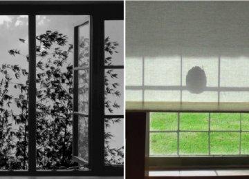 Screenshots from '24 Frames'