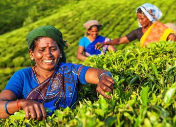 Iran is India's largest importer of tea in value terms while it is the second largest after Russia in terms of volume.
