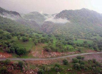 Call to Help Save Zagros Forest Region