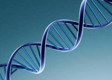 Health Minister  Urges Use of  Genetic  Database