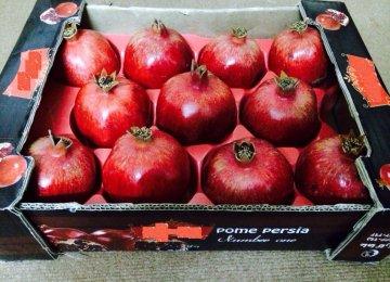 Agro Imports Criticized