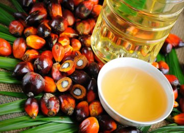 Malaysia to Hold Palm Oil Events in Tehran