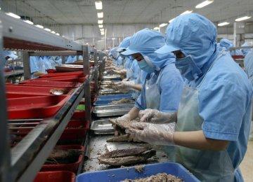 Vietnam Reports  Trade Surplus