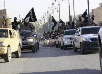 Egyptian Militants Pledge Loyalty to IS