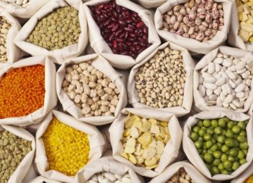 Iran Meets 90% of Need for Pulses