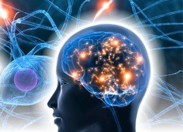 Brain Mapping Lab Soon