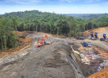 Int'l Firms Named and Shamed for Deforestation