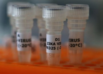 Potential for Marked Increase in Zika Cases