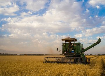 The government has already raised 36.6 trillion rials (nearly $1 billion) to buy wheat from farmers so far in the current fiscal year (started March 20).