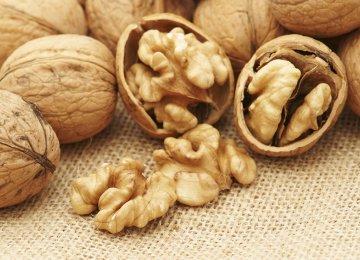 Walnut Output at 230,000 Tons p.a.