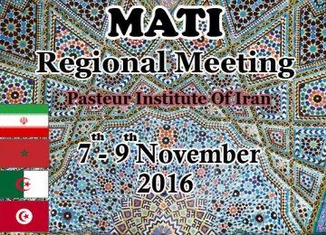 MATI Regional Meeting