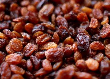 Decline in Raisin Exports