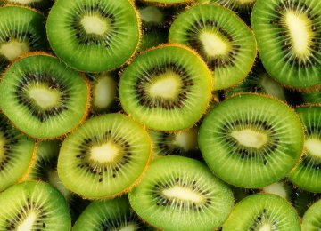 Rise in Kiwi Exports