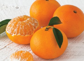 New Regulation on Orange, Tangerine Trade