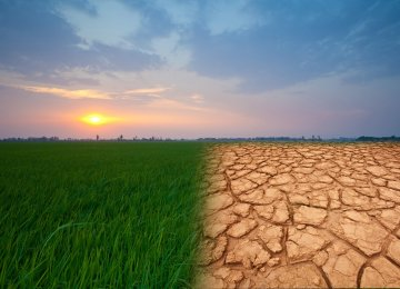 Changing rainfall patterns has endangered agricultural production in the Near East and North Africa region, with effects being particularly noteworthy in Iran.