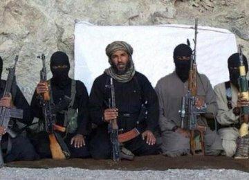 Key Member of Terror Cell Nabbed