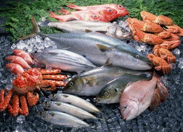Seafood Exports Rise 15%