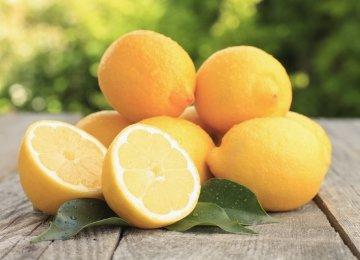 Lemon Production to Meet Domestic Demand