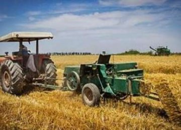 wheat production will outstrip demand