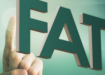 Constitutional Framework Decides Coop. With FATF