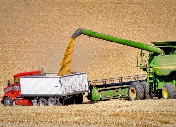 Wheat  Self-Sufficiency