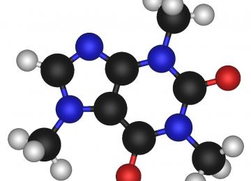 Nanosorbent Eliminates Antibiotics in Livestock
