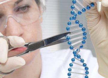 CRISPR in Human Trial