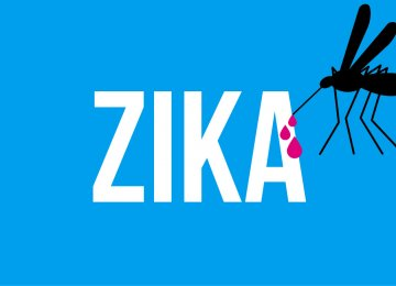 Olympics Team Prepared Against Zika