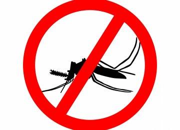 Singapore Confirms 41 Cases of Local Zika Virus
