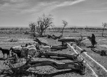 $1.2b to Combat Water Crisis