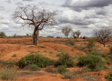 Desertification Challenging Iran, Wiping Forests