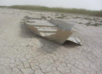 Desiccating Wetlands,  Mismanagement & Mores