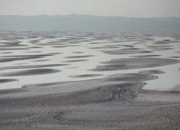 Treated Wastewater to Help Revive Urmia Lake