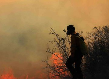 Wildfires Wreaking Havoc, Despite Preventive Measures