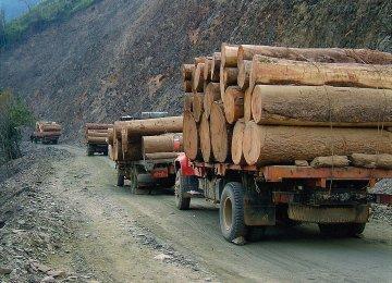 Environmental Crimes Cost $258b